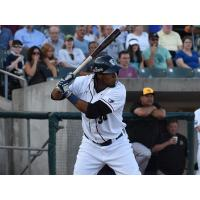 Jimmy Paredes batting for the Somerset Patriots